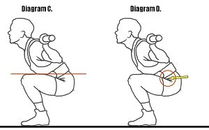 671345de38d22f As you squat down the crease where your upper thigh and hip joint together  should temporarily break below that line (the top of the knee).